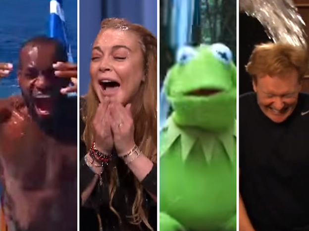 Bill Gates, Martha Stewart, LeBron James, Lindsay Lohan, Kermit the Frog and Conan O'Brien all got icily drenched for charity.