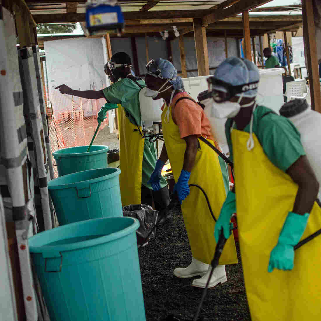 How Do We Stop Ebola? WHO Declares War On The Virus