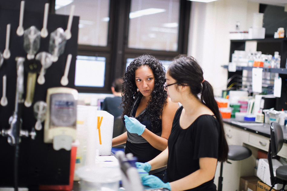 Victoria Ruiz (left), a postdoctoral fellow in immunology, works with Brianna Delgado, a high school student that she mentors, at the Blaser Lab, inside NYU's Langone Medical Center in New York, NY. (Ramsay de Give for NPR)