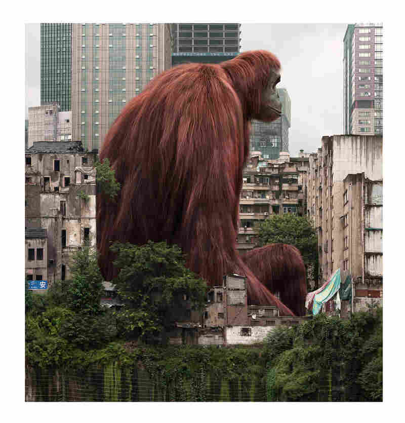 Liu Di; Animal Regulation – No. 18. Liu is famous for placing huge animals with small heads in urban landscapes.