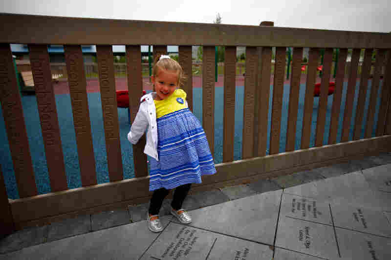 Safety fence:A fence contains children within the playground and keeps them away from outside hazards such as roads, drop-offs and bodies of water.