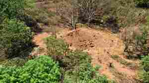A photo released by the Nicaraguan army shows an impact crater made by a small meteorite in a wooded area near Managua's international airport and an air force base.
