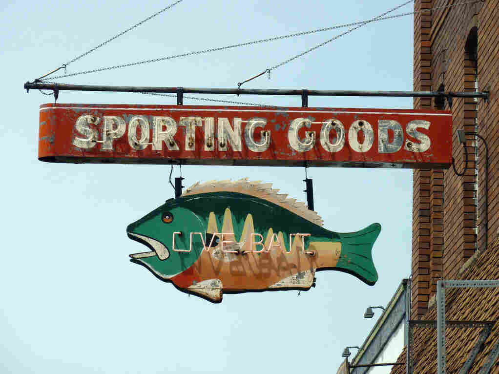 Opponents of Michigan fish farms say there is no room for them in the lakes because of sport fishing and other recreational activities.