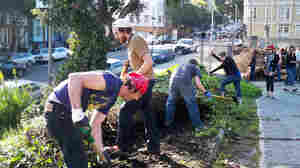 Urban farmers turning a vacant lot into a garden plot in San Francisco's Hayes Valley.