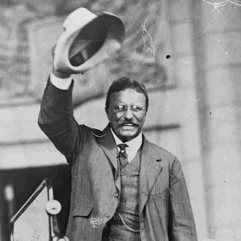 3 Roosevelts Come Alive In PBS Documentary, Ken Burns' Best Yet