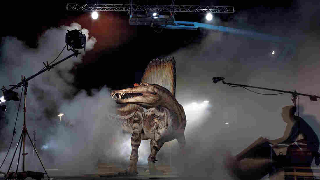 Who's your daddy? A model of the Cretaceous predator spinosaurus gets rock star treatment during a photo shoot for the October issue of National Geographic.