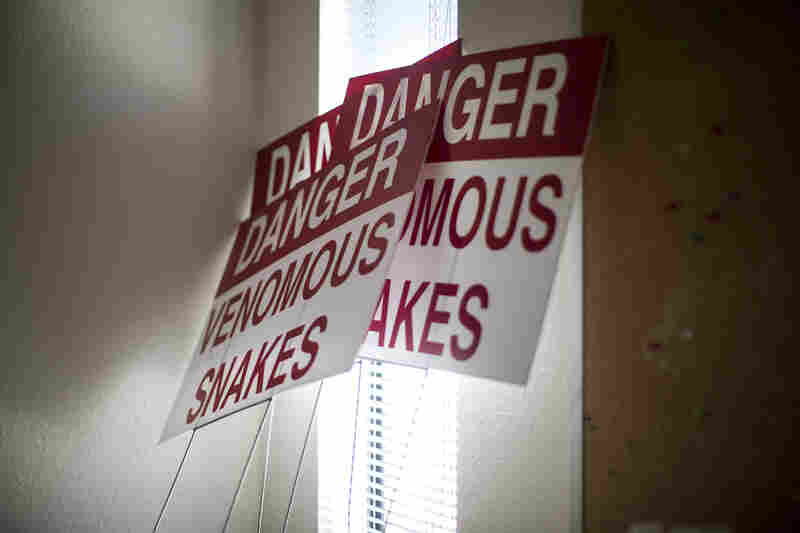 Signs used to be posted outside the clinic warning of venomous snakes. Minto says the signs were part of an effort to deter protesters from the clinic's front lawn.