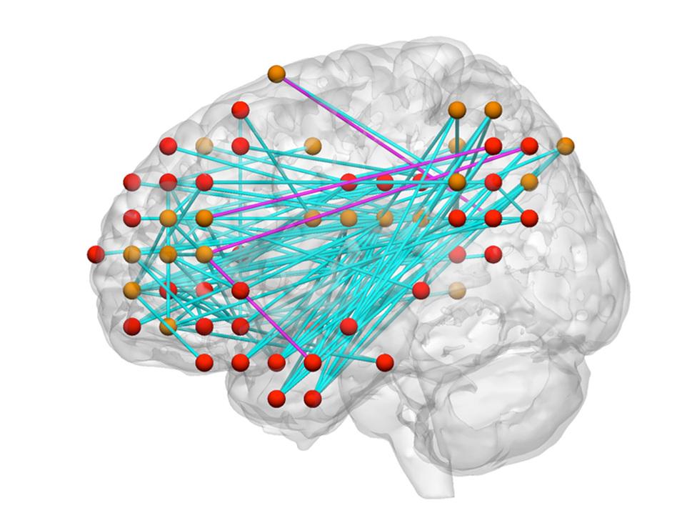 how to develop kids brain