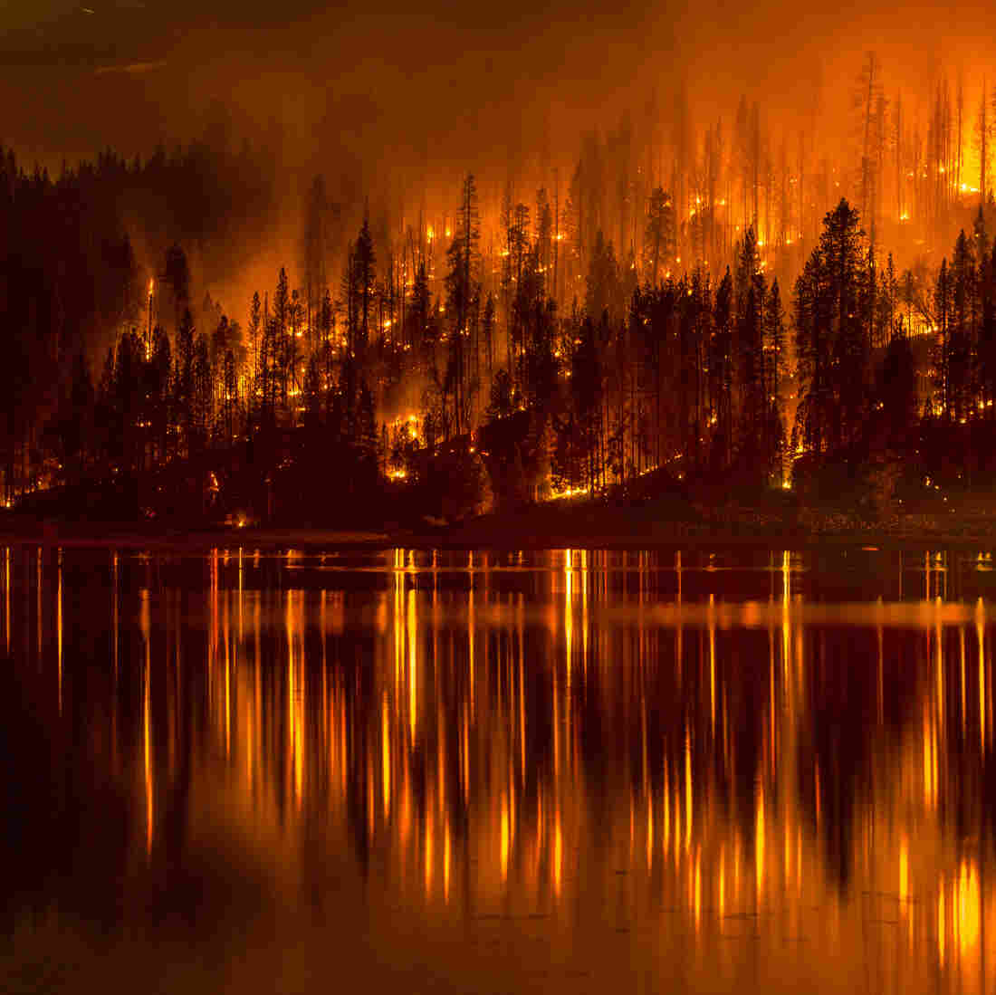 Wildfire Threatens More Than 1,500 Homes In Northern California