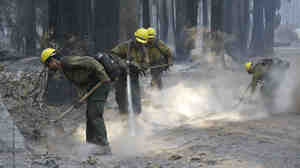 Firefighters from the U.S. Forest Service clean up hot spots of the King fire in the El Dorado National Forest near Georgetown, Calif., late last week.
