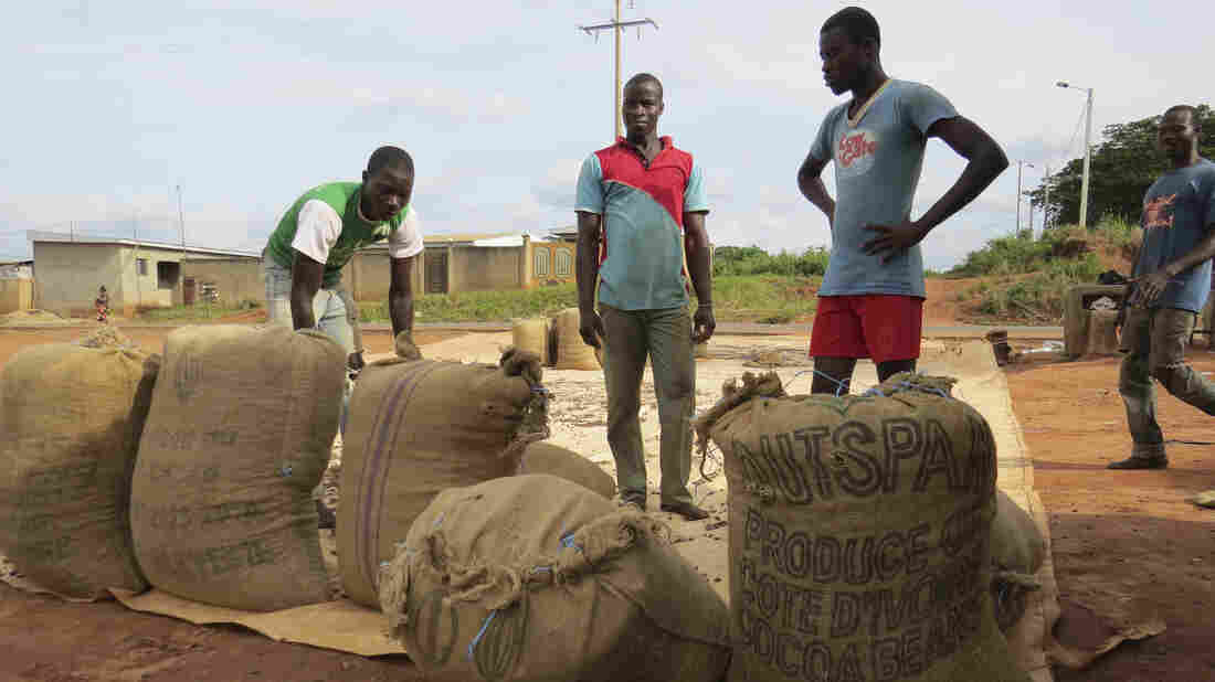 To protect its cocoa workers from Ebola, the Ivory Coast has closed its borders.