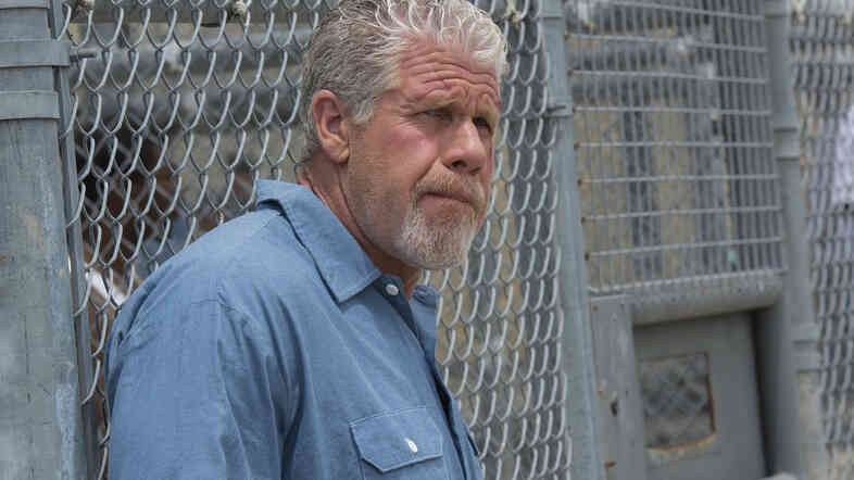 Ron Perlman played Clay Morrow on FX's Sons of Anarchy.