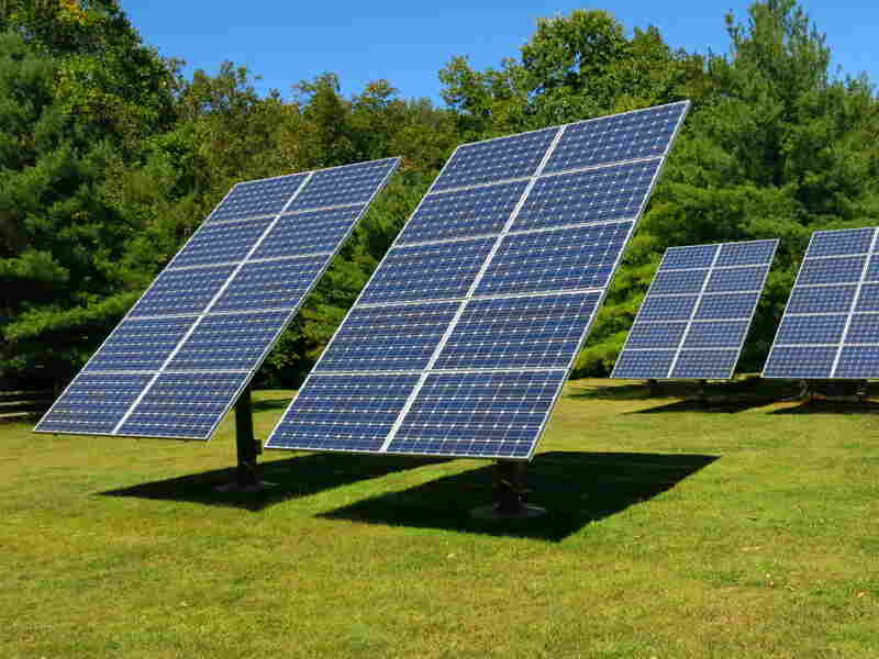 On Cole's property there are 40 solar panels that provide about half the electricity used for her home and electric car.