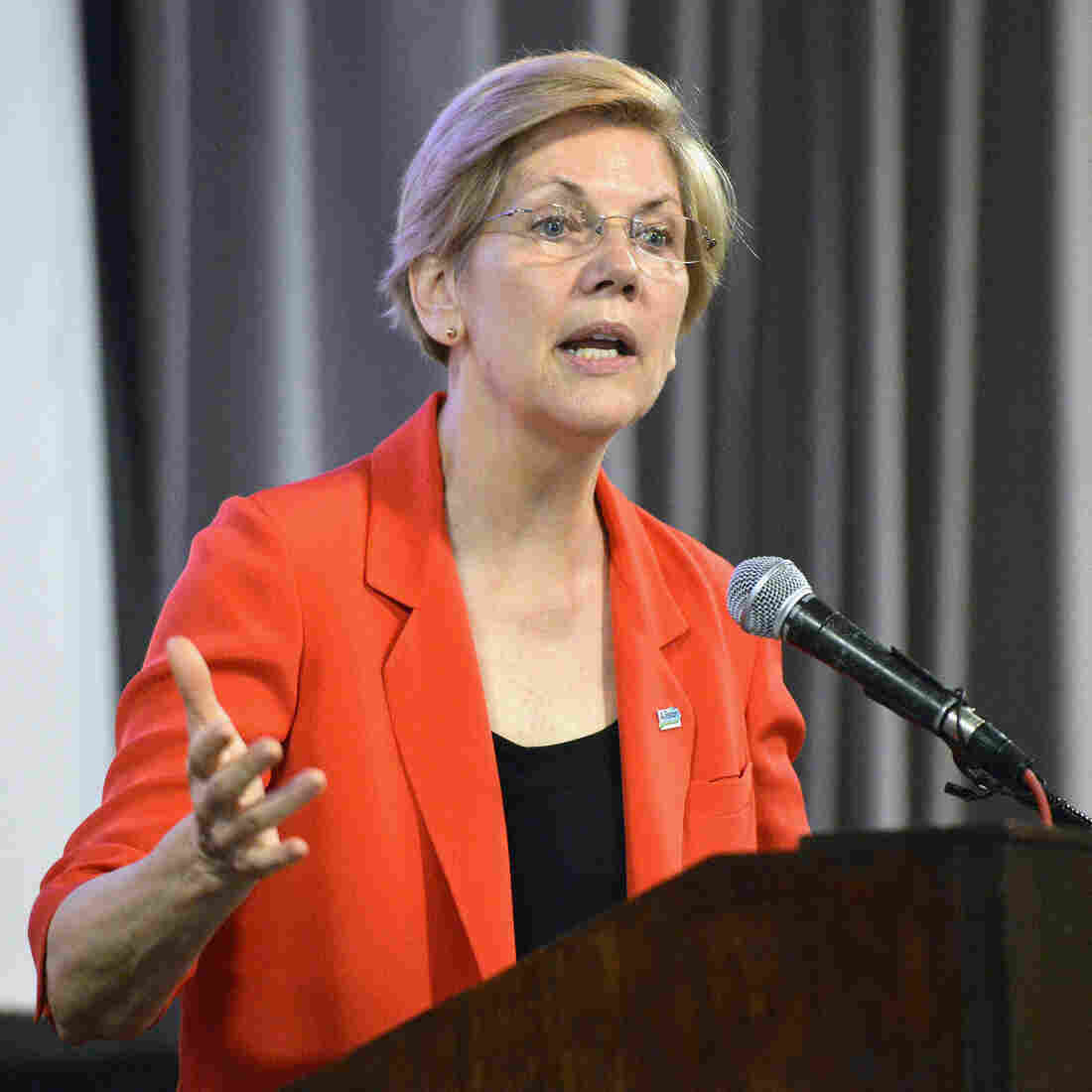Sen. Elizabeth Warren, of Massachusetts, speaks to a group of supporters at a rally in support of Kentucky Democratic candidate Alison Lundergan Grimes in June.