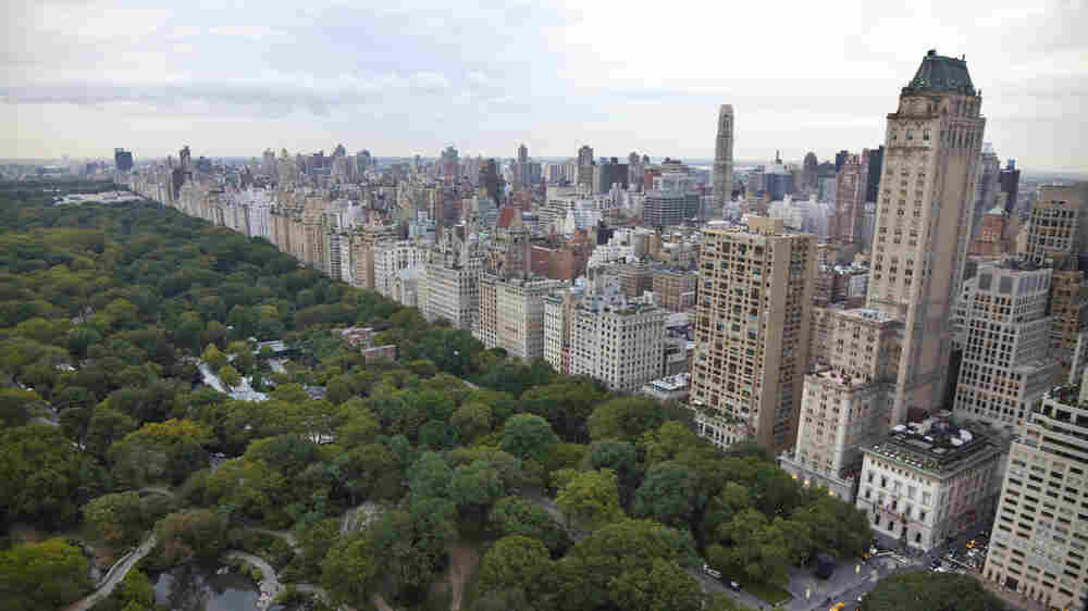 Soil Doctors Hit Pay Dirt In Manhattan's Central Park