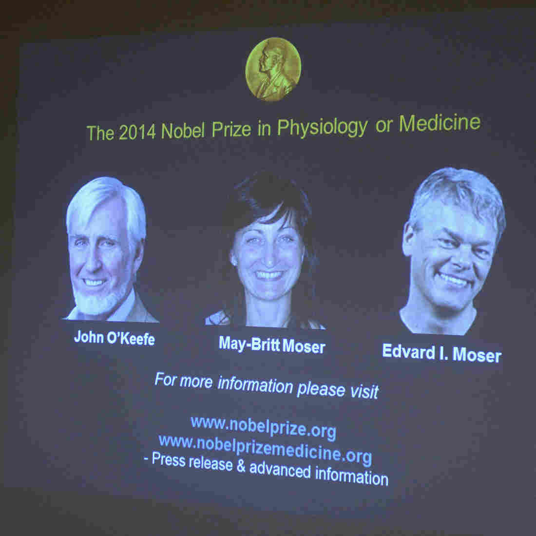 A screen presents the winners of the Nobel Prize in Medicine, U.S.-British scientist John O'Keefe and Norwegian husband and wife Edvard Moser and May-Britt Moser, for their discoveries of cells that constitute a positioning system in the brain.