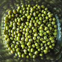 Green grams, or mung beans, can be boiled until soft or pureed into hummus.