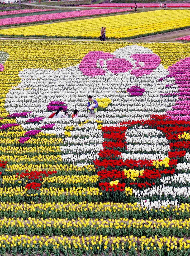 Hello Kitty is portrayed in flowers at an annual tulip festival in western Japan in 2005.