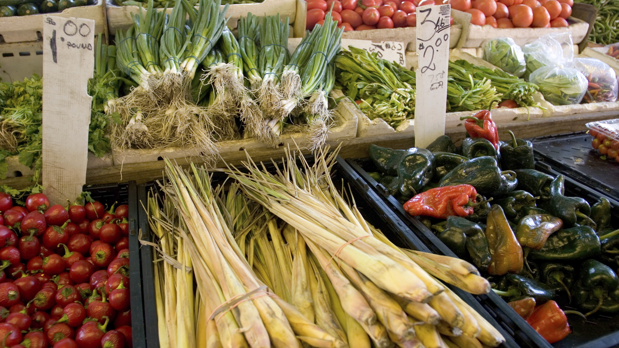 Apps Aim To Guide You On 'Sustainable Food' (Whatever That Means)