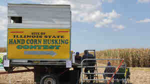The Illinois State Corn Husking Competition is one of nine competitions happening during harvest season all across the Midwest.