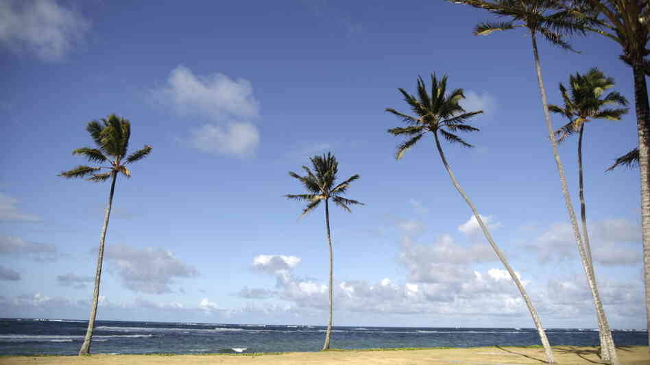 View of Kualoa beach on the island of Oahu on June 17, 2010.