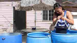As Their Wells Run Dry, California Residents Blame Thirsty Farms