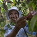 Climate Change Has Coffee Growers In Haiti Seeking Higher Ground