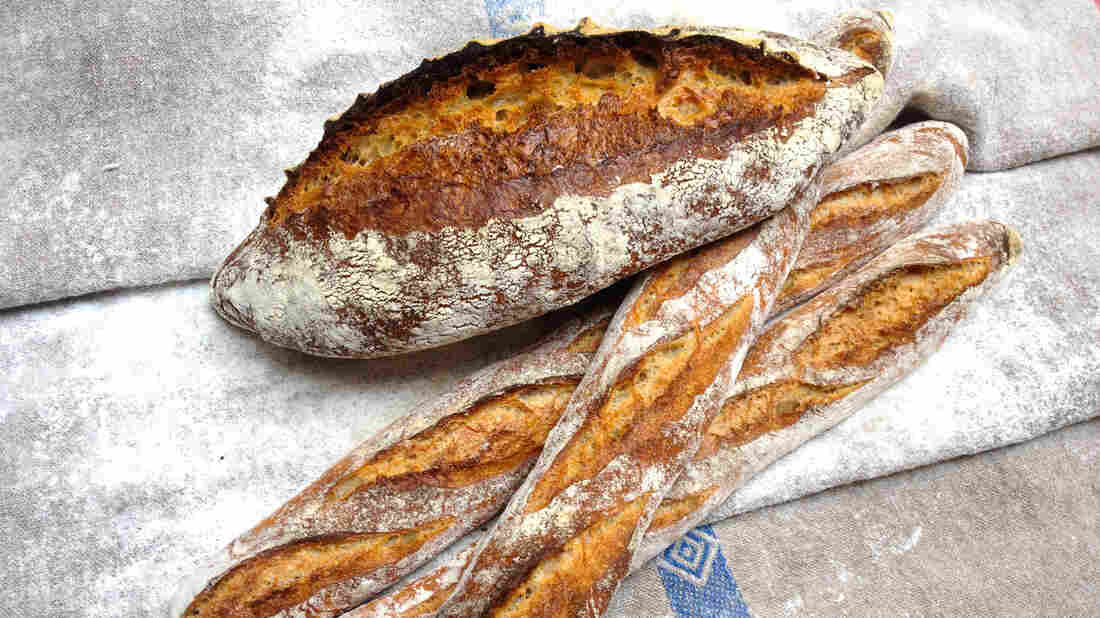 Sourdough loaves made by Fromartz with a bolted white flour from Anson Mills in South Carolina that he says reminded him of the wheat he'd tasted in southern France.