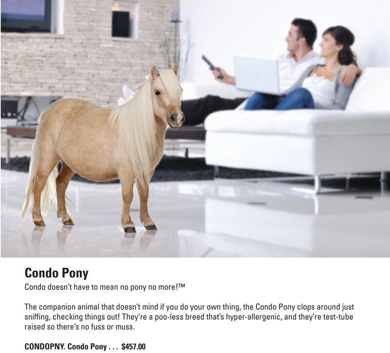 joy pony играть без скачивания