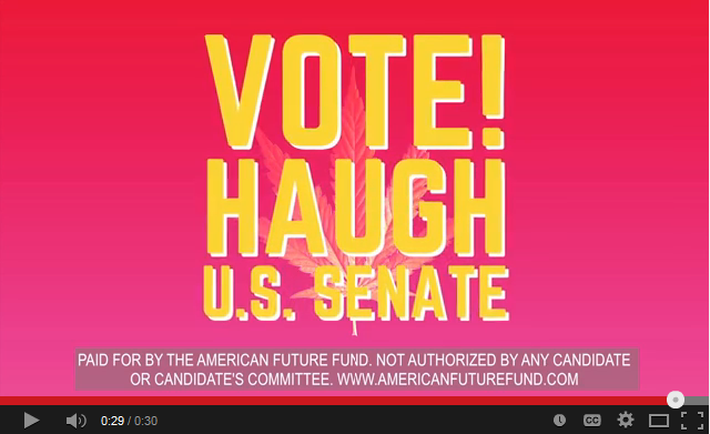 The American Future Fund has purchased $225,000 worth of online ads supporting Libertarian Sean Haugh in the North Carolina Senate race, citing his pro-marijuana stance.