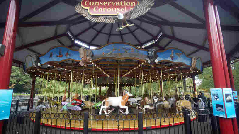 The National Zoo's Conservation Carousel in Washington, D.C., features animals hand carved by Carousel Works in Mansfield, Ohio.