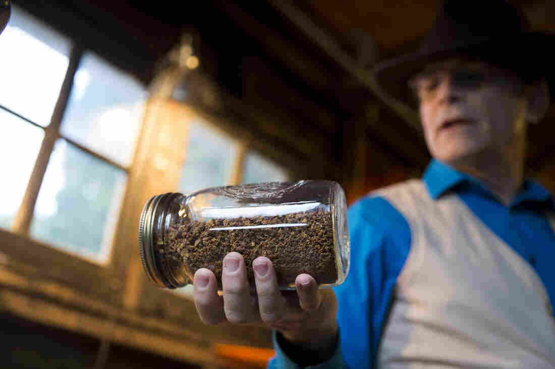 John Kallas, director of Wild Food Adventures, leads a class on making acorn pudding at his home in Portland, Ore. He shows students how to shell, grind, process and leach acorns to get a subtly flavored flour.