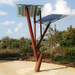 Israel's Solar-Powered 'Trees': For Smartphones And Community