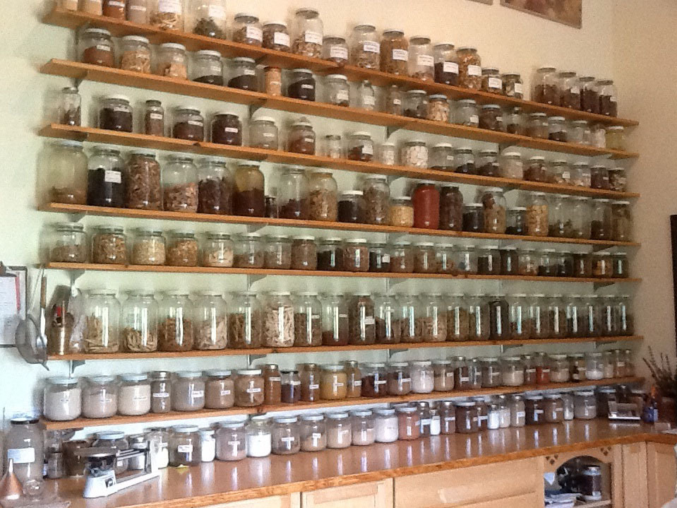 Fresh From Appalachia: Chinese Medicinal Herbs