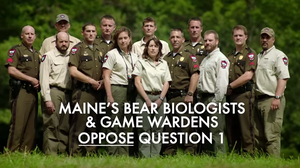 Bear-Baiting And Big Races Drown Portland, Maine, In Campaign Ads
