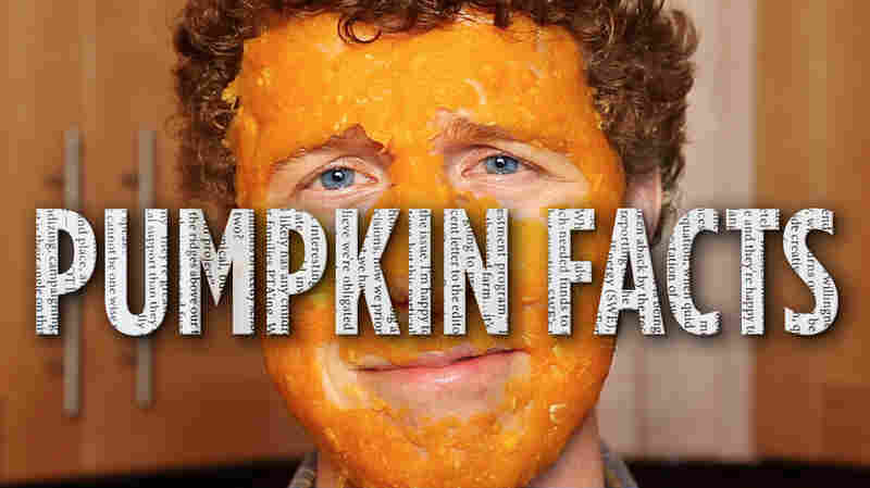 Pumpkin facts.