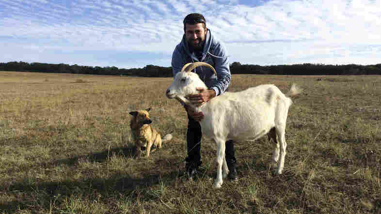 Ernes Ayserezli, 26, runs a goat farm with his father.