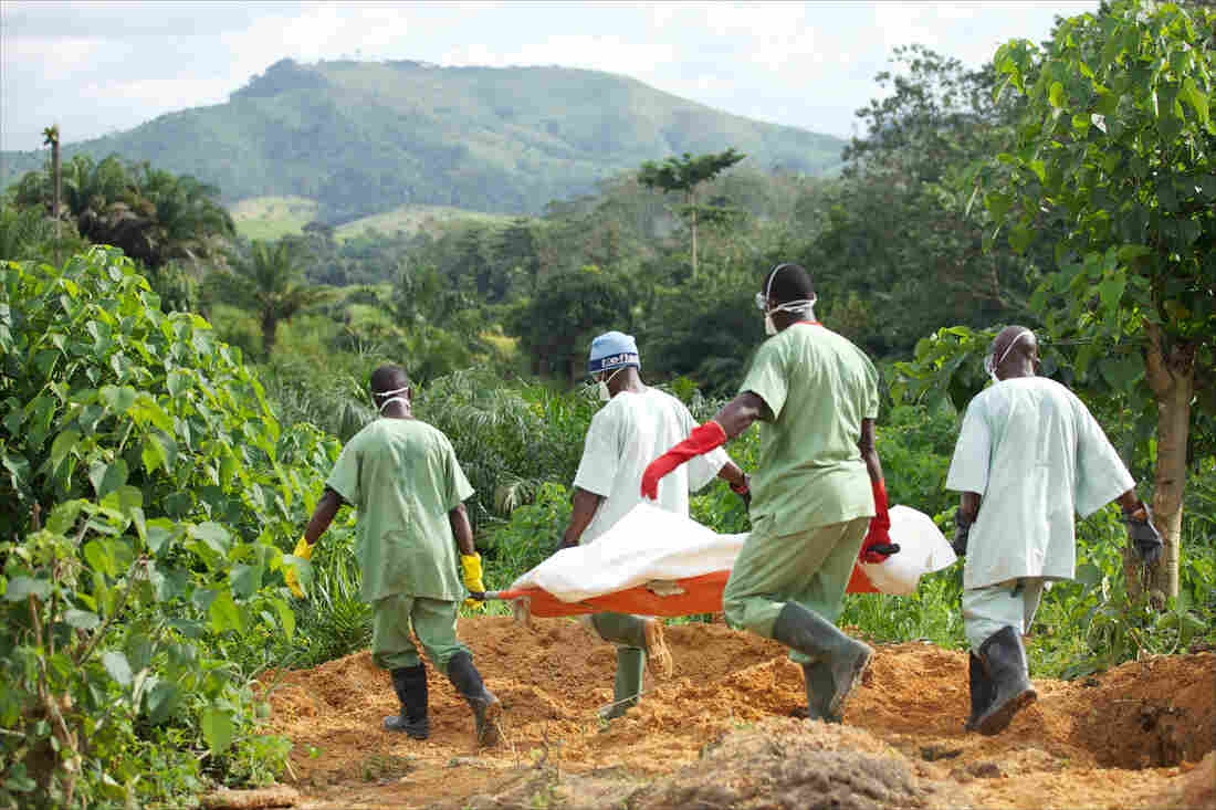 Red Cross workers in Guinea carry the body of an Ebola victim to a cemetery full of fresh graves for others who have succumbed to the disease.