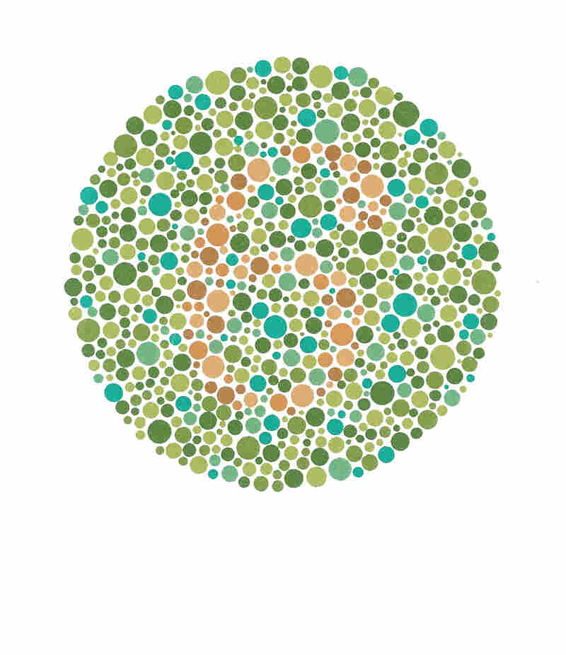 Viewers with normal color vision read this number as 6. Those with red-green deficiencies read the number as 17. Those with total colorblindness don't see a number at all.