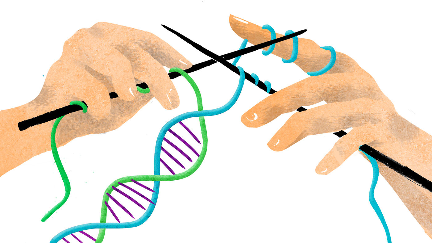 genetic engineering a good thing essay This essay discusses human genetic engineering, and the legal and ethical  issues surrounding human  scientists discovered that genes that trigger  genetic diseases constitute a great part of the inherited causes of  ons news,  20 (13): 8-9.