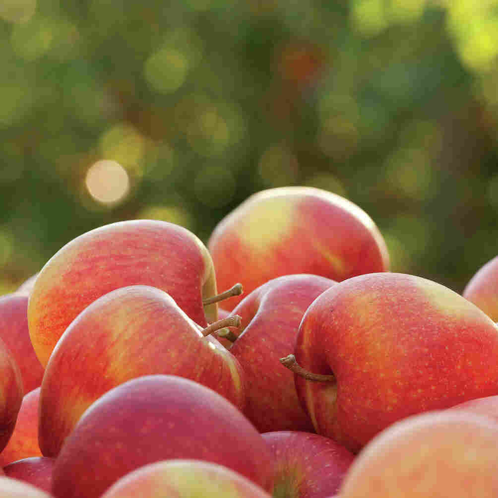 Want To Grow These Apples? You'll Have To Join The Club