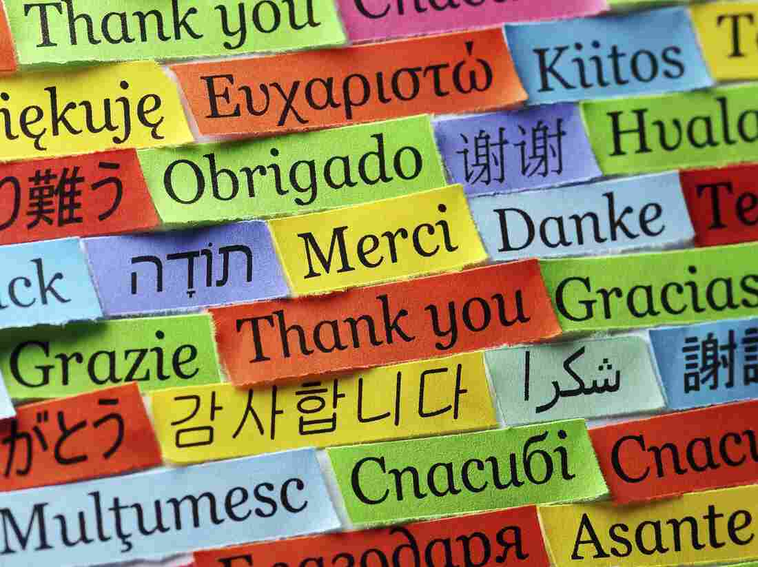Thank you in many languages.