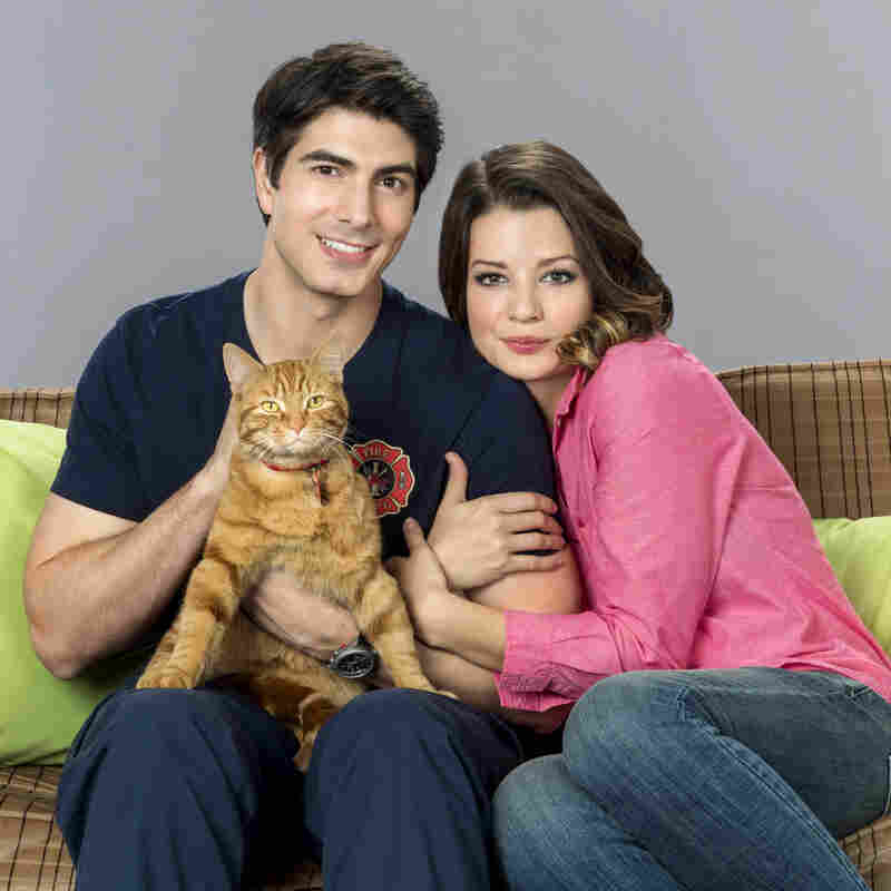 Brandon Routh, Kimberley Sustad and KITTY KITTY KITTY in Hallmark's The Nine Lives Of Christmas.