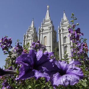 mormon church publishes essay on founder joseph smith s polygamy npr mormon church admits founder joseph smith had up to 40 wives