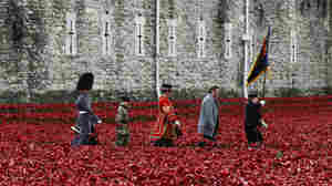 """British servicemen and artist Paul Cummins (second from right) walk past his art installation """"Blood Swept Lands and Seas of Red,"""" made of ceramic poppies, during an Armistice Day ceremony at the Tower of London on Tuesday."""