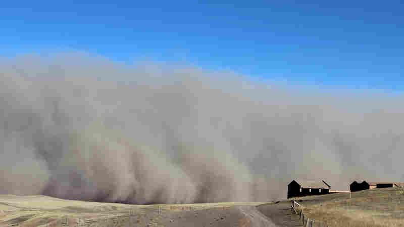 A 2013 sandstorm hits Shandan Horse Ranch in Zhangye City in northwest China's Gansu province.
