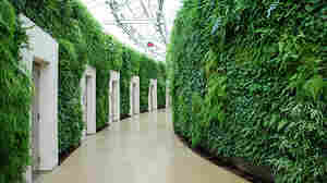 America's best place to go, 2014: Philadelphia's Longwood Gardens wins an award for its restrooms.