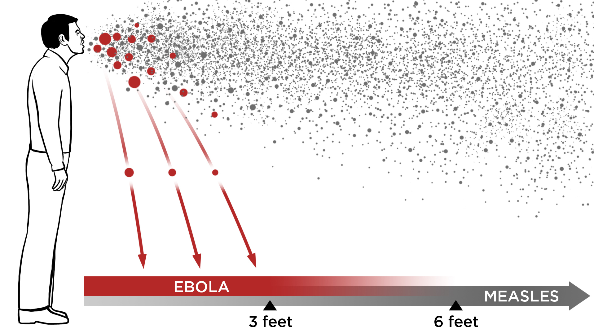 Ebola In The Air: What Science Says About How The Virus Spreads