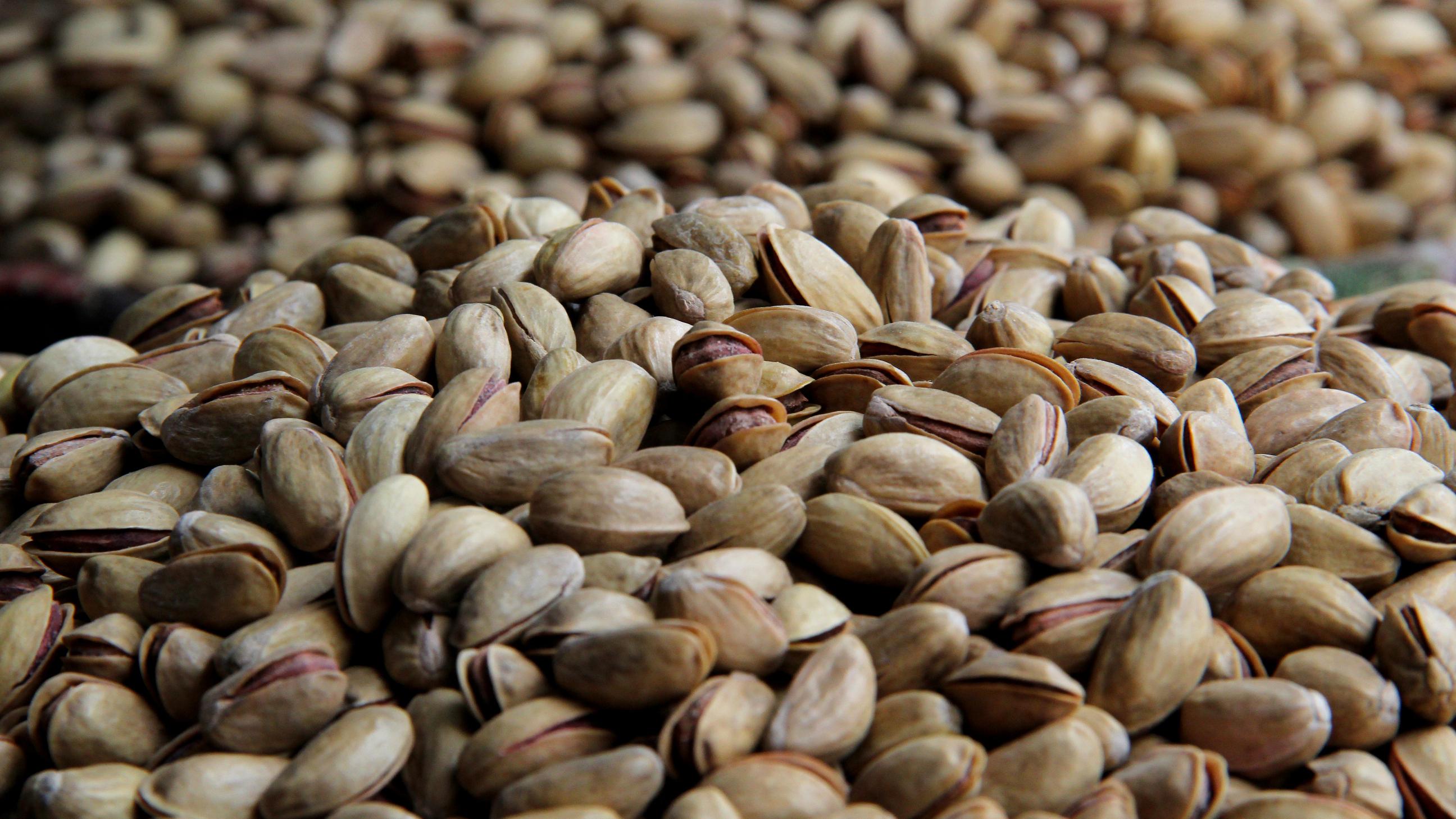 Turkey Looks For Energy In An Abundant Resource: Pistachio Shells