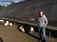 Local farmer Kate Stillman decided to build her own abattoir because, she says, a lack of processing facilities is